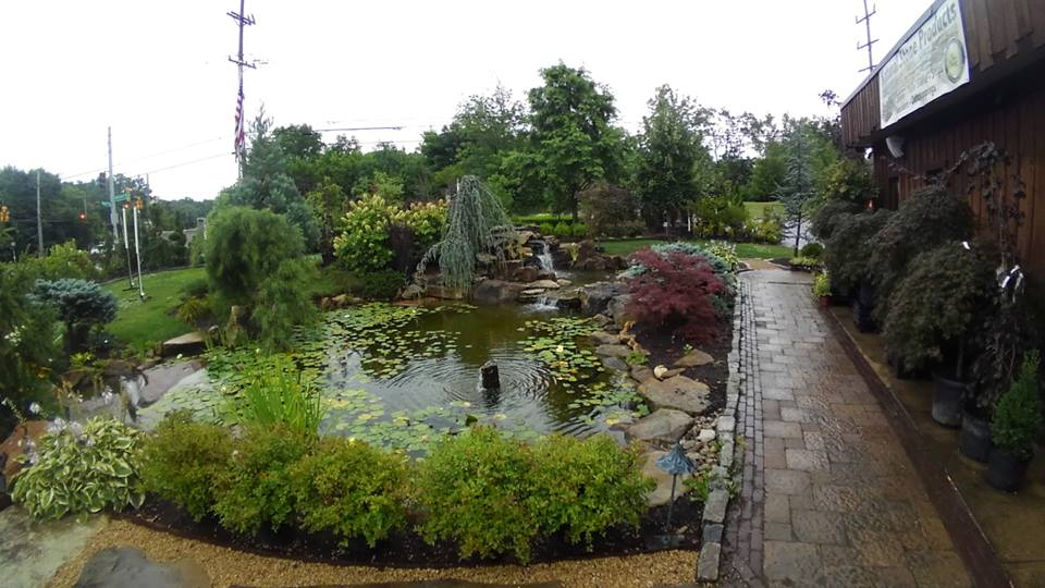 Cincinnati 39 s garden center fertilome bulk products for Ornamental fish pond supplies