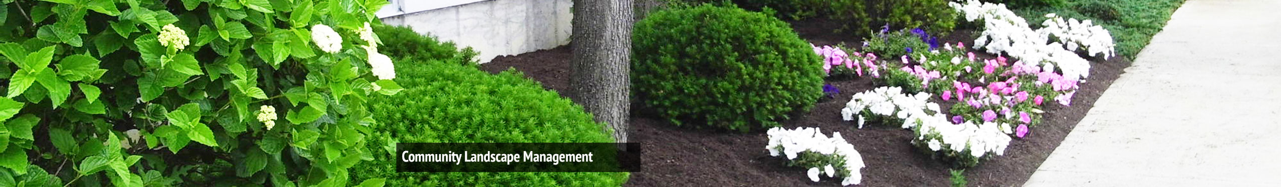 Community Landscape Management
