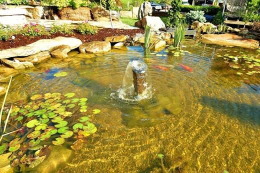 Water gardens ohio allison landscaping for Design of ash pond